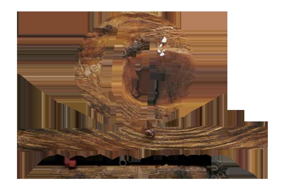Sedona Bar and Grill
